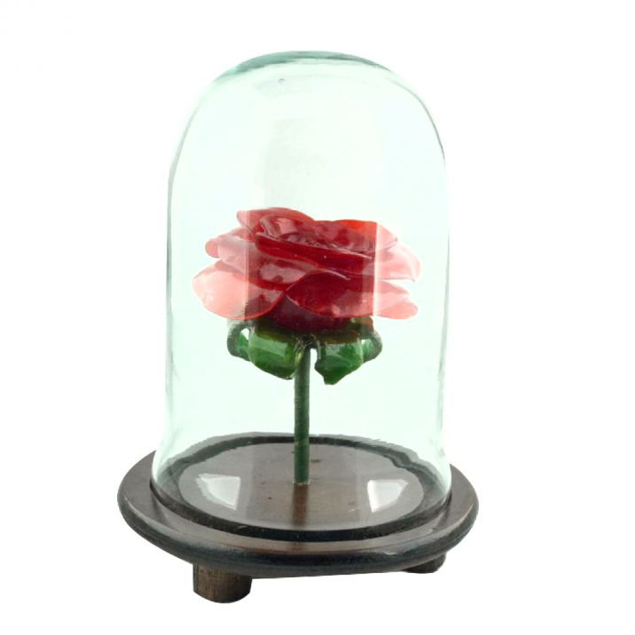 Rosa Roja en urna pequeña