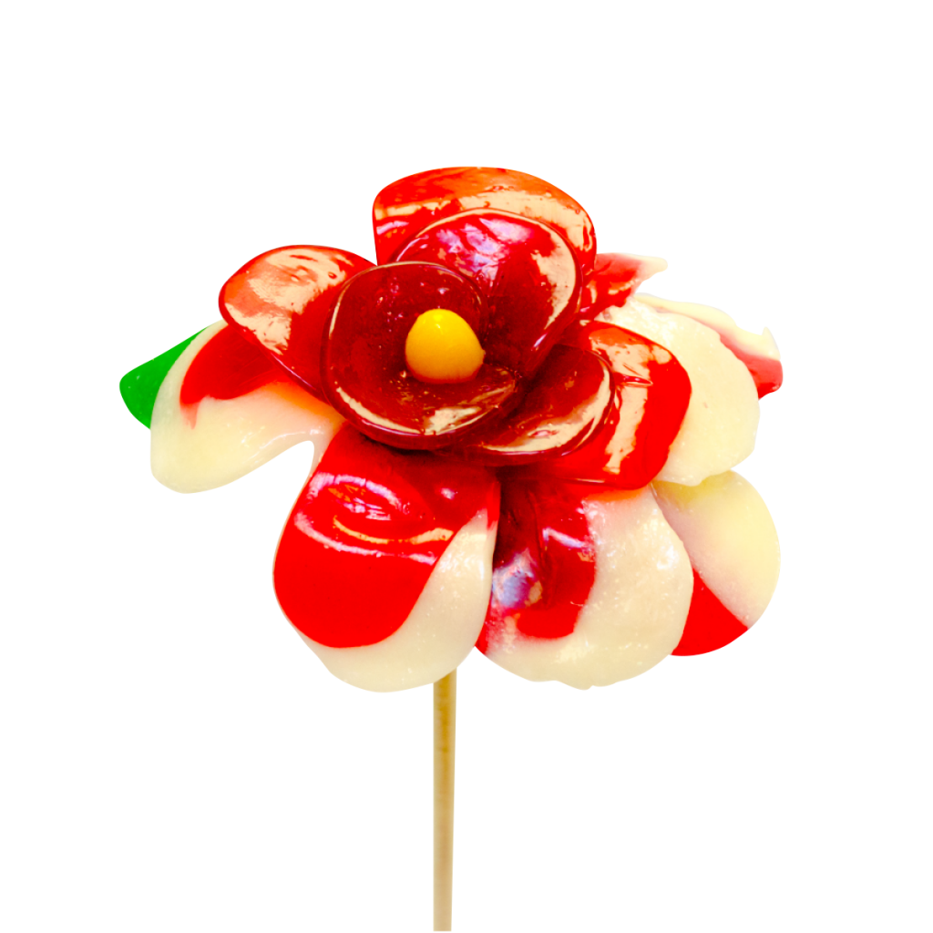 Flor dos colores